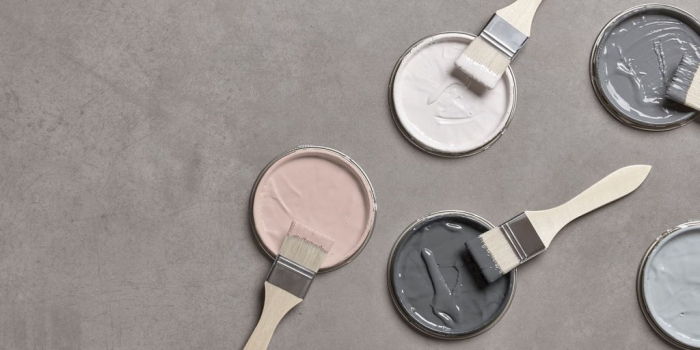 Cox & Cox Launch First Signature Paint Collection